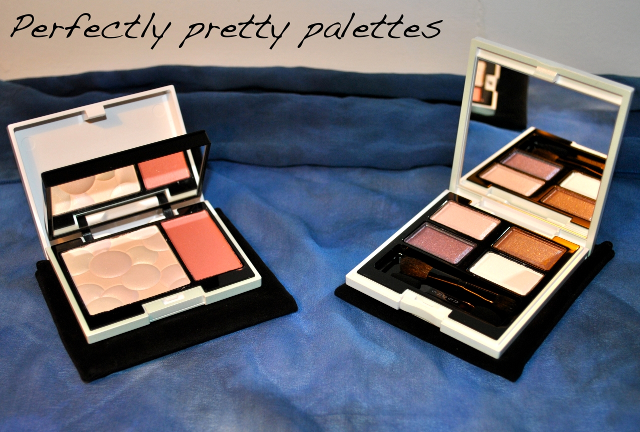 * c/o suqqu face color palette in ex-02 and blend color eye shadow palette in ginusudama ex-13 *