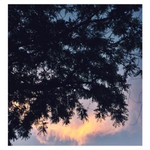 Screen Shot 2015-05-17 at 11.28.39 PM
